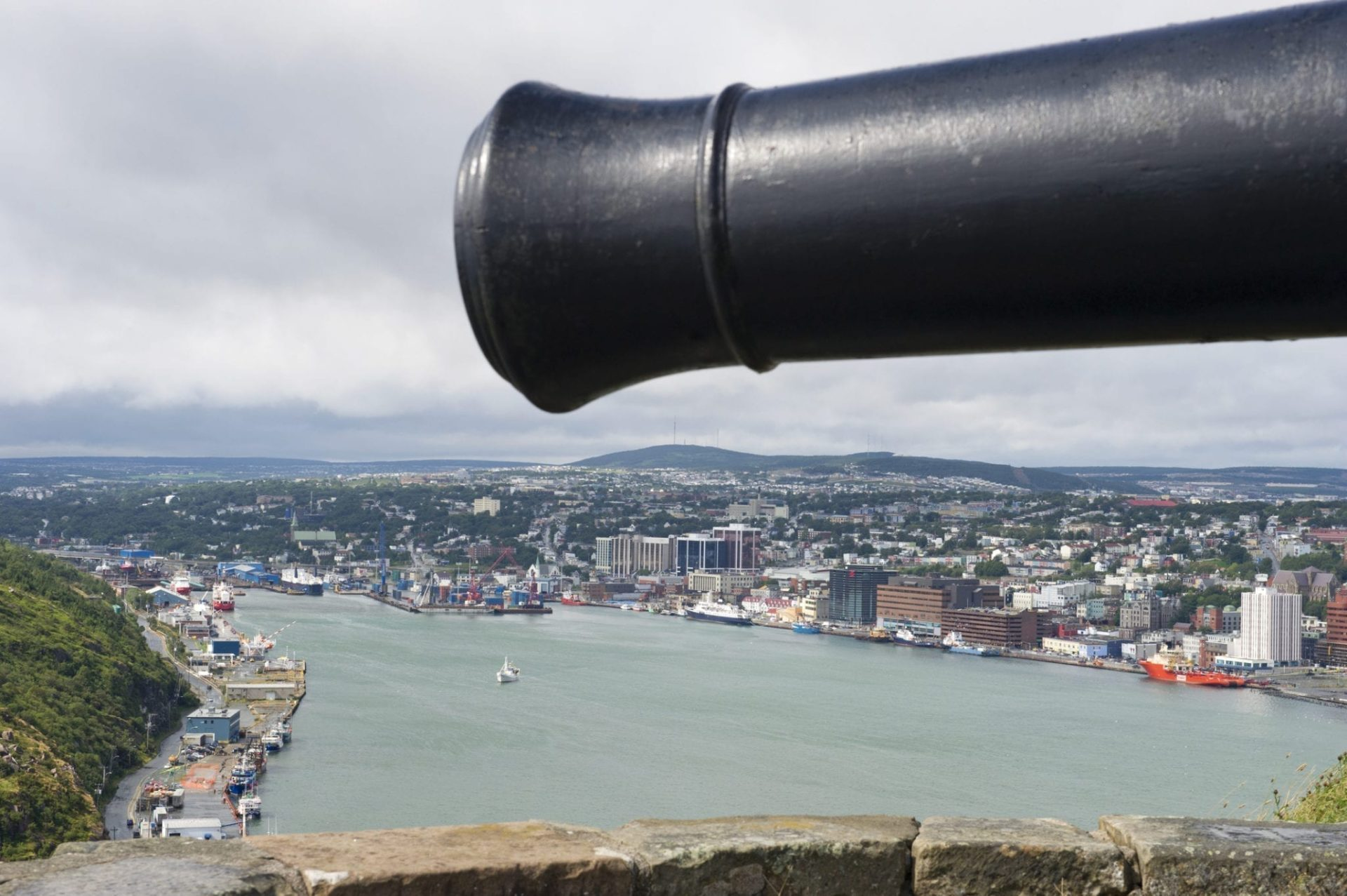 Overlooking the harbour and city of St John's